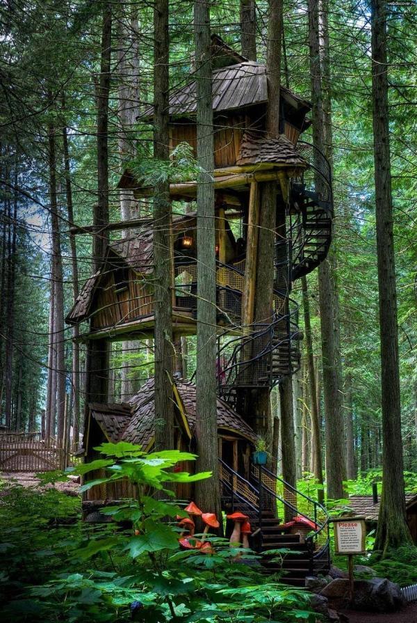 Casa da árvore de três andares, no Canadá